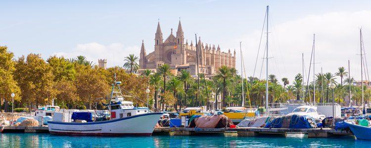 Puedes recorrer algunos de los senderos en Palma de Mallorca