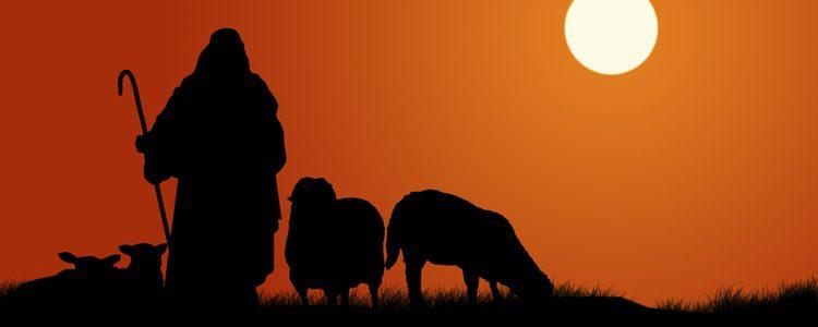 Los pastores y sus ovejas nunca faltan en el portal de Belén, así que en el viviente no los dejes fuera
