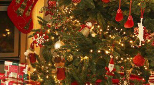 Árboles de Navidad: ¿Abeto natural o sintético?
