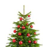 Árbol de Navidad decorado con bolas rojas