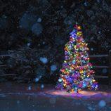 Árbol de Navidad multicolor: un universo lleno de magia e ilusión
