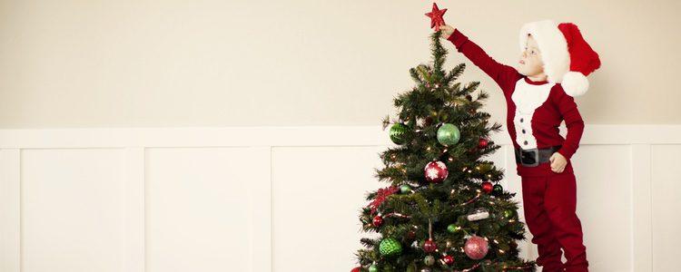 Cambia la tradicional estructura del árbol