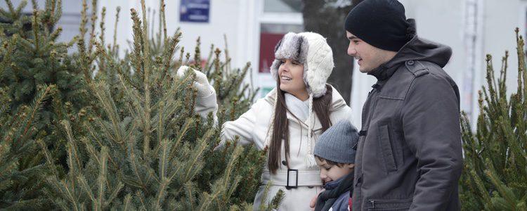 El árbol de Navidad natural es esencial que esté bien cuidado