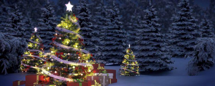 Si eres tradicional no lo dudes, y coloca la tradicional estrella de Navidad