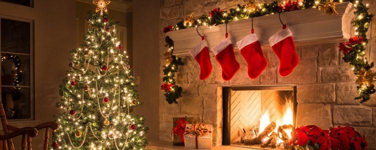 Las plantas son un muy buen elemento de decoración en Navidad