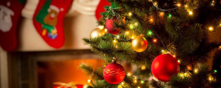 El árbol de Navidad es el elemento principal de toda decoración, por lo que el abeto es la planta más utilizada
