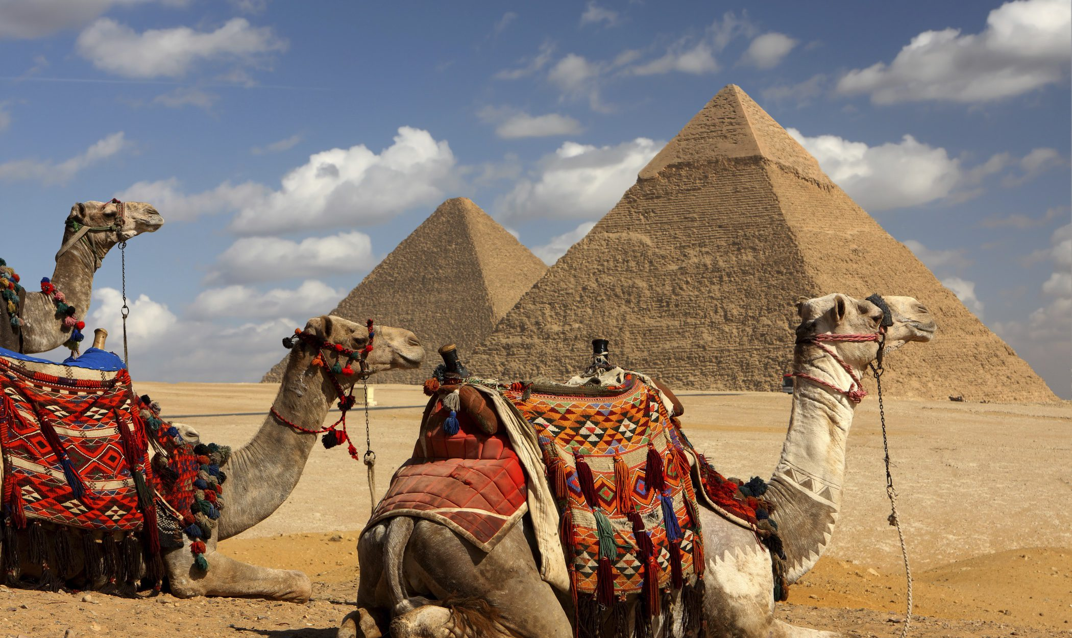 Navidades en Egipto