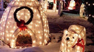 Cómo decorar el jardín con luces navideñas
