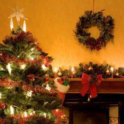Árbol de Navidad con luces blancas grandes