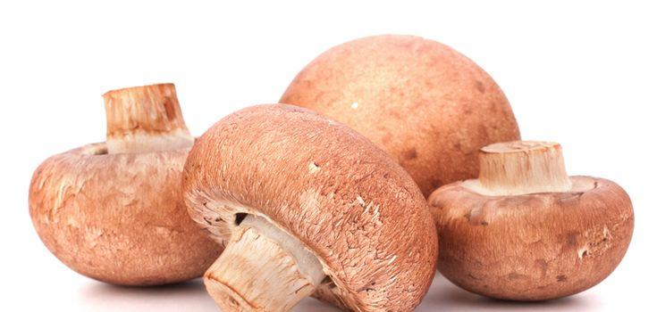 Los champiñones y el resto de ingredientes del relleno se pueden sustituir por otros