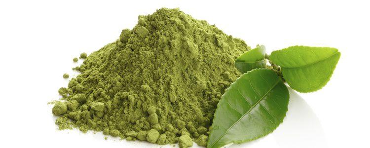 Matcha, el té verde en polvo